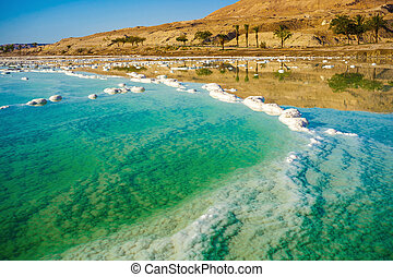 landscape with dead sea coastline sunny day