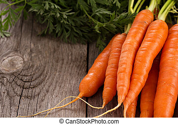 Fresh carrot with green leaves