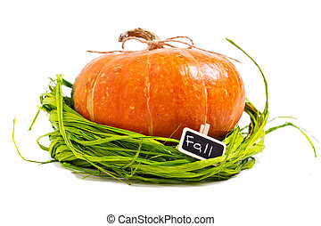 Fresh orange pumpkin with green raffia isolated on white