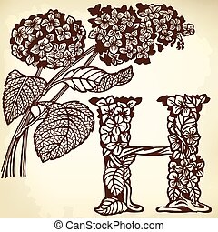 hydrangea - Letter of the alphabet H. A branch of a...