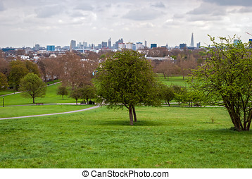 londres, Horizon, panorama, primevère, colline