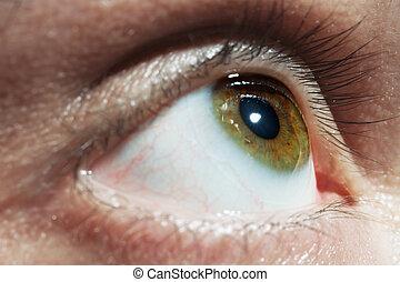 Green men eye macro