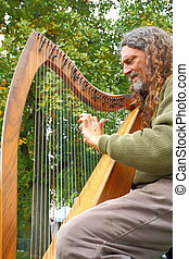lever harp musician - man playing lever harp