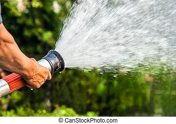 men hand watering the plants