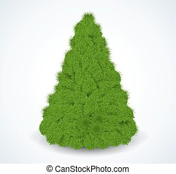 Christmas green tree Realistic vector illustration Isolated...