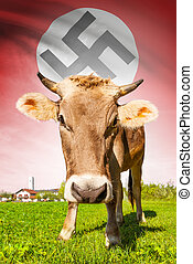 Cow with flag on background series - German Reich