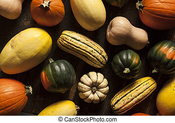 Organic Assorted Autumn Squash on a Background