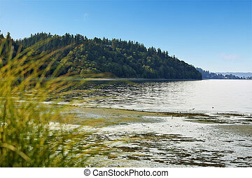 Private beach with Puget Sound view, Burien, WA - Scenic...