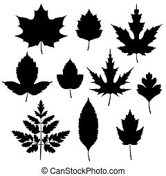 Set of autumn leaves silhouettes.