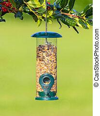 pájaro, alimentador, Lleno, semillas