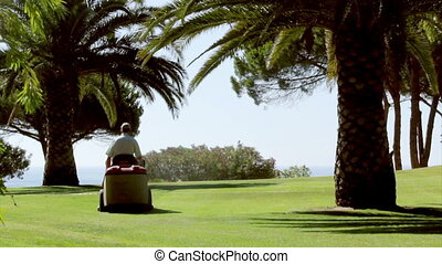 Ride-on Lawn Mower A - Ride-on lawn mower, gardening...