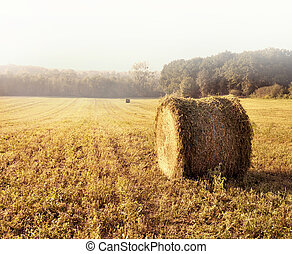 haystack - country landscape with a haystack in a field,...