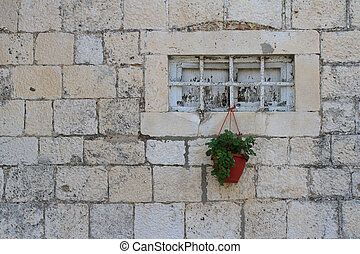 old small window with bars and potted plant. horizontal
