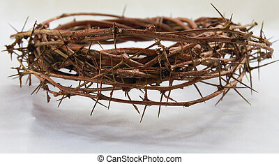 crown of thorns  - The crown of thorns on a white stuff