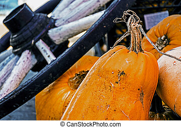 Pumpkins and cartwheel exposed to a fall fair