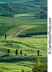 Countryside of Val dOrcia near Pienza in Tuscany