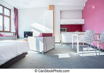 Interior of small modern apartment with pink wall