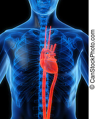 highlighted heart - 3d rendered illustration of a...