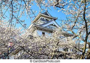 Nagahama Castle - Nagahama - APR 13: the sakura season on...