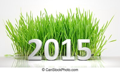 2015 in front of green grass