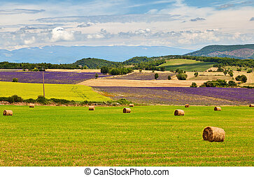 Beautiful landscape of Provence