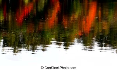 Fall foliage reflected on water