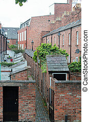 Back of a row of terraced houses