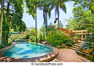 Backyard pool nestled away amongst palms and ferns