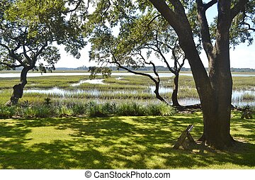 Salt Marsh at High Tide - Tidal salt marsh at high tide in...