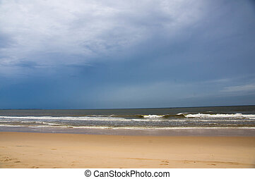 Beach and the ocean in windy day