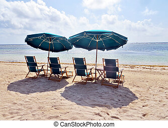 Beach chairs - Umbrellas and lounge chairs under a palm...