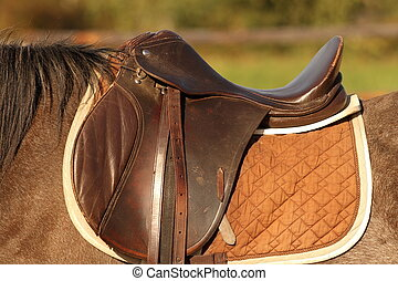 horse saddle - traditional saddle mounted on a brown mare