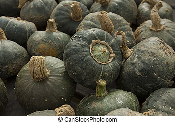 Buttercup squash at outdoor market