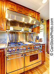 Shiny modern stove with hood in luxury kitchen room