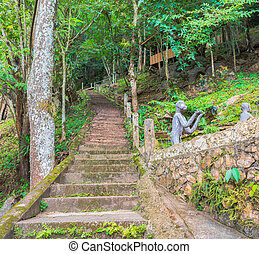 image of long stairs way to forest destination - image of...