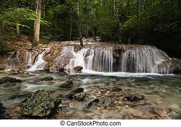 Beusnira - Details of Beusnita stream in Beusnita Natural...