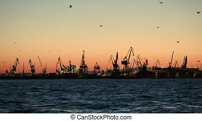 Dock with cranes in the evening - Dock with ships and cargo...