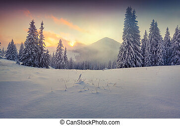 Foggy winter sunrise in the mountains Retro style