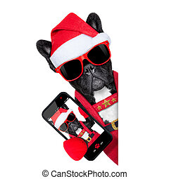 santa selfie dog - santa claus christmas dog wearing a hat...
