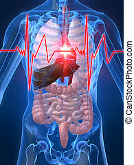heartattack - 3d rendered illustration of a human anatomy...
