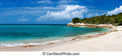Beautiful beach on St Martin Caribbean - Beautiful tropical...