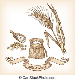 Bakery sketch. Hand drawn illustration of wheat and grain
