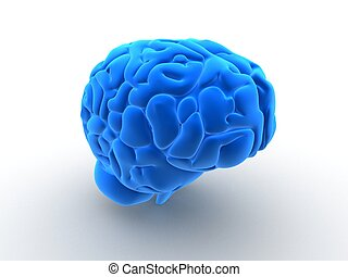 human brain - 3d rendered anatomy illustration of a human...