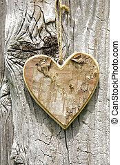 wooden heart on tree bark