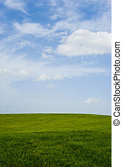ideal grassy field - an ideal grassy field with a blue sky...
