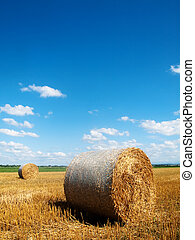 Countryside landscape with bales of hay - Scenic landscape...