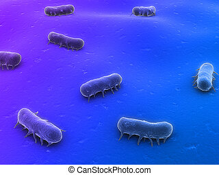 salmonella - 3d rendered close up of some isolated...