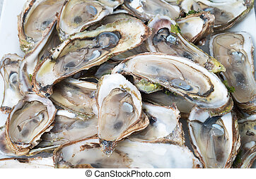 Raw oysters bed