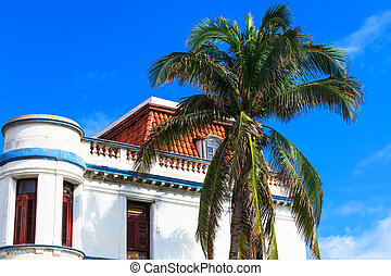 white house and palm tree