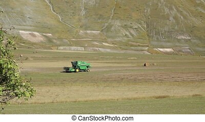 Green tractor rides through the fields of mountain pastures